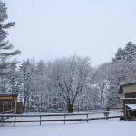 4月17日なのに雪景色